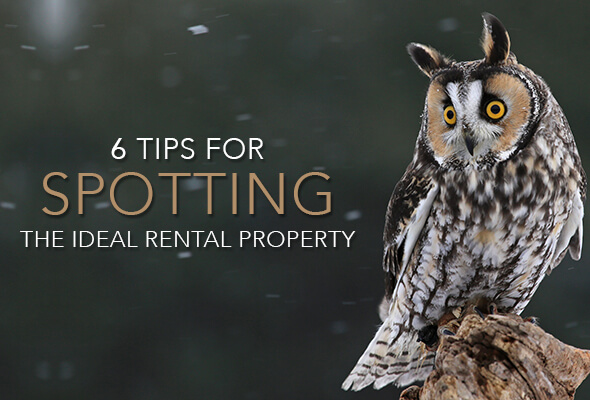 6 Tips for Spotting the Ideal Rental Property
