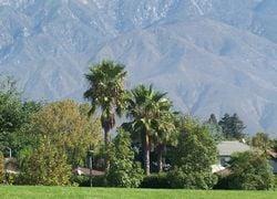 Alta Loma San Bernardino County First Team Real Estate