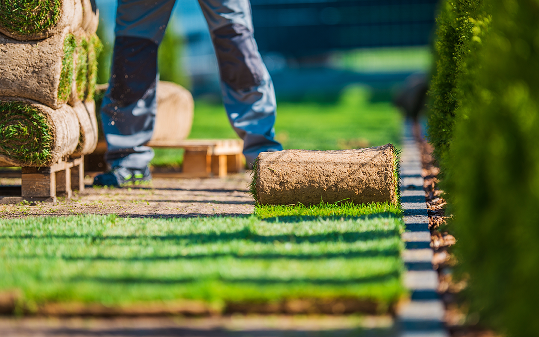 8 Tips To Help Homeowners Landscape Their Yard