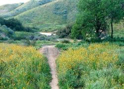Loma Linda San Bernardino County California First Team Real Estate