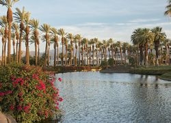 Palm Springs Riverside County California First Team Real Estate