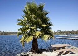 Santee San Diego County California First Team Real Estate