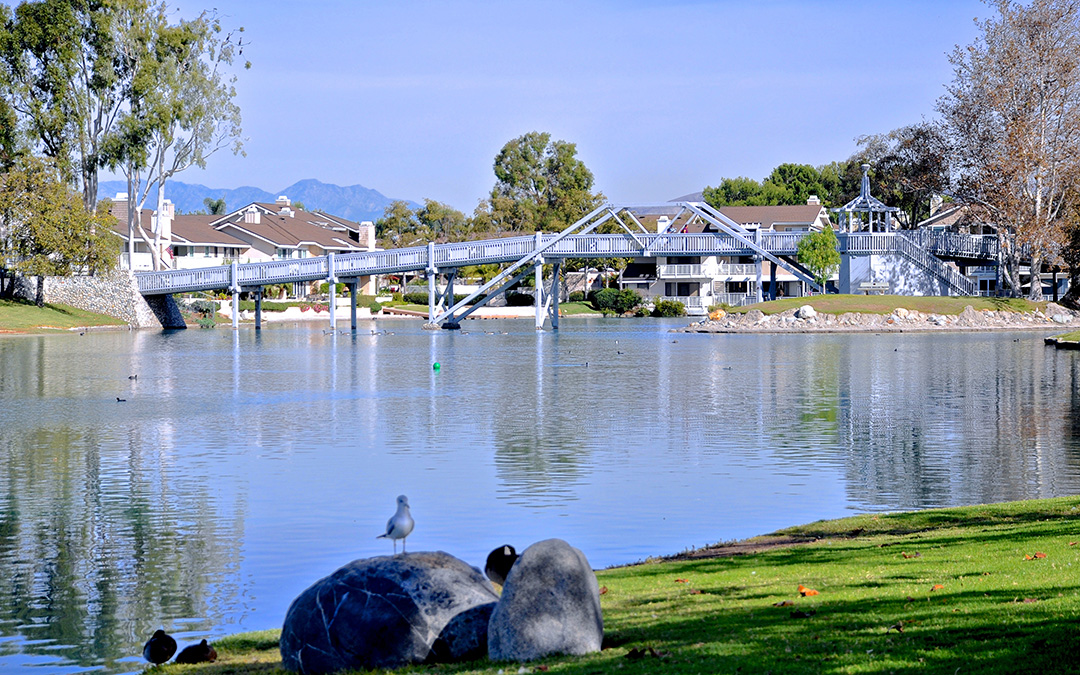 Homes for Sale in Woodbridge Irvine CA