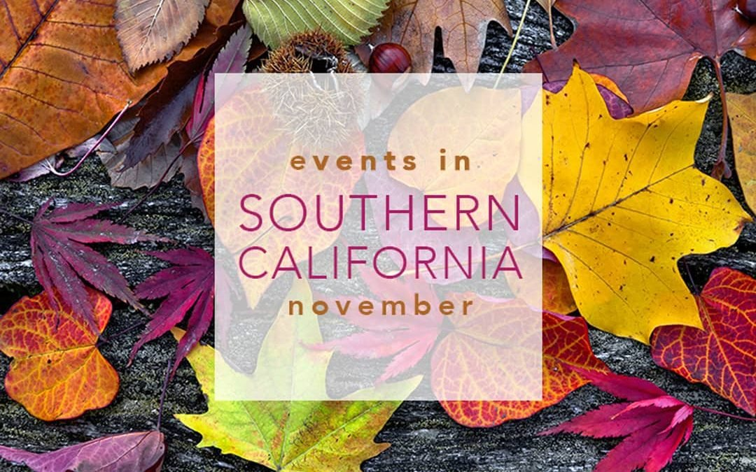 Events in Southern California   November 2020