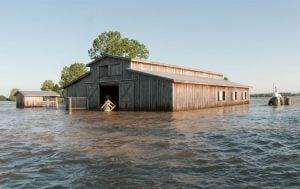 Natural Disaster Farm