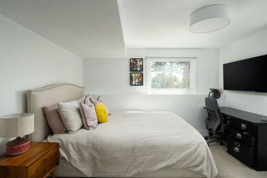 HIllsdaleCir-Basement-Bedroom-1b