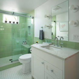 Hillsdale-Basement-Bathroom