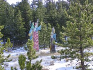 Sheppards in the forest in Estes Park, Coloraod