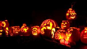 Great Highwood Pumpkin Festival, October 14 – 20