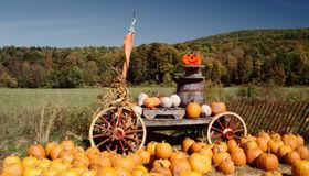 Family-Friendly Halloween Festivals