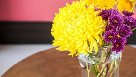 Awaken Your Home with Spring Colors