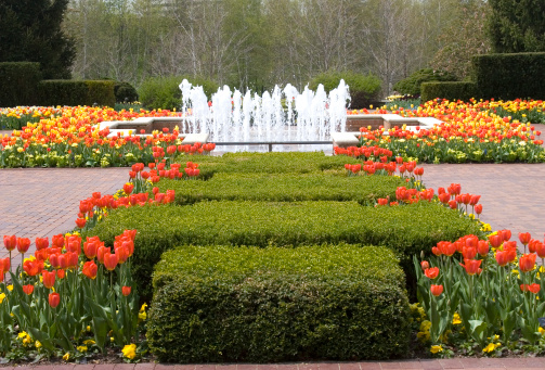 Chicagoland's Most Famous Gardens
