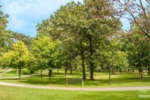 Highland Park Real Estate 7