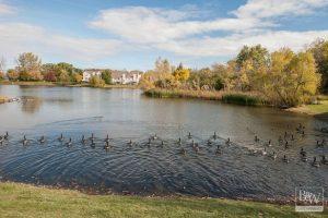 Lake Villa Real Estate 3