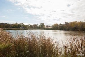 Lake Villa Real Estate 4