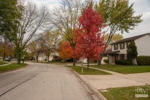 Buffalo Grove Real Estate