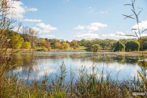 Crystal Lake Real Estate