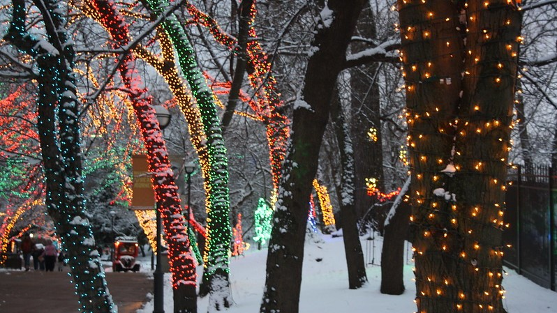 Five Chicagoland Neighborhoods for Winter Lovers