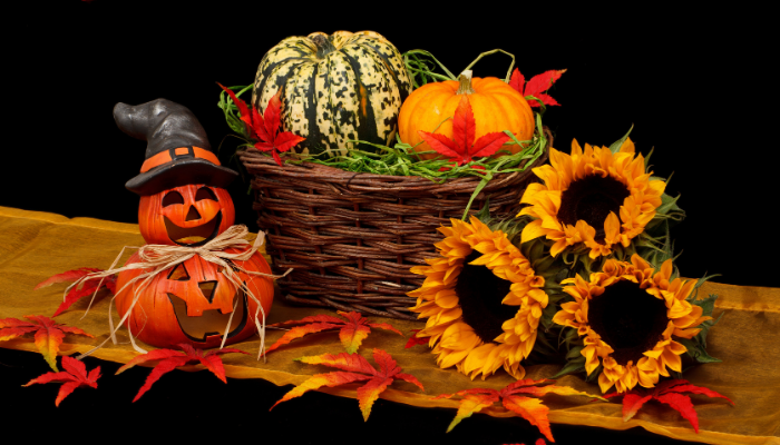 Fall Crafts and Creative Projects
