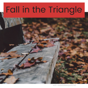 Are You Bored? Things to do in the Fall in the Triangle