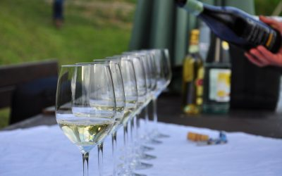 N.J. Food and Wine Festival