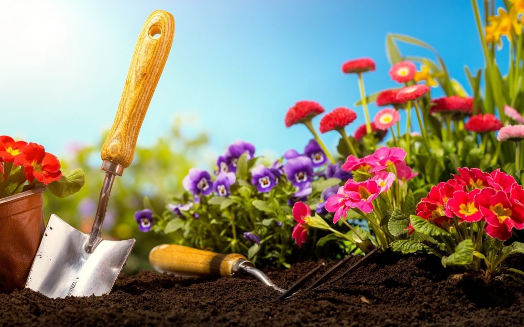 Preparing for Spring – Get Your Landscaping Up to Par