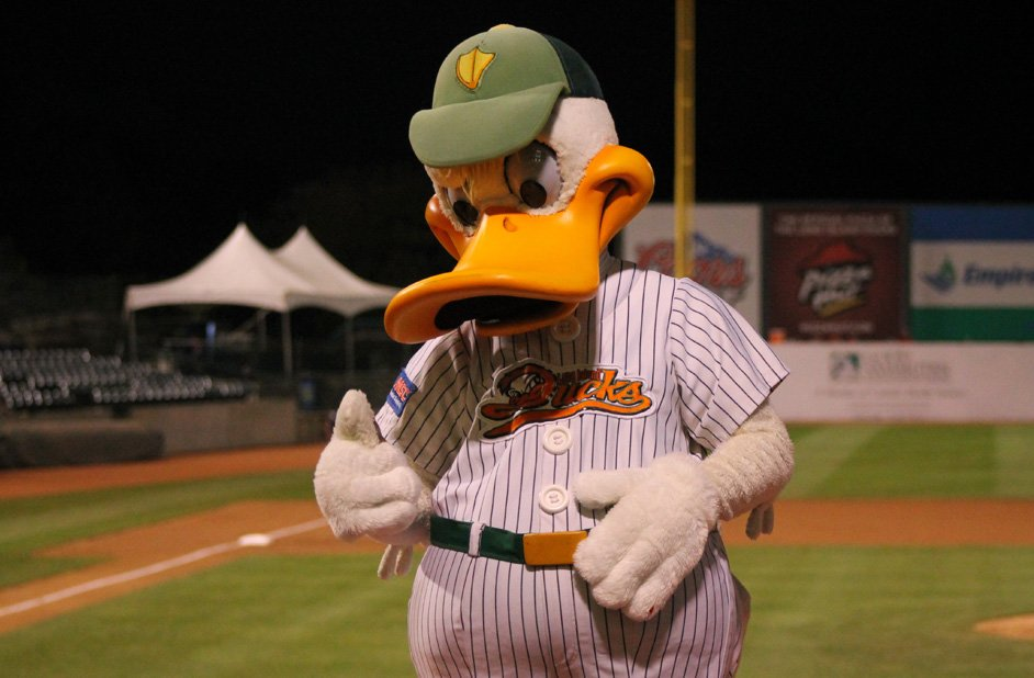 Bethpage Ballpark: Home Of The Long Island Ducks